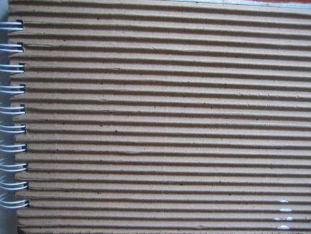 Spiraledcover 2