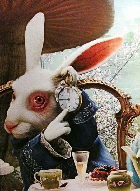 White rabbit fromposter