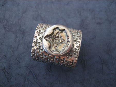 Sheild seal ring