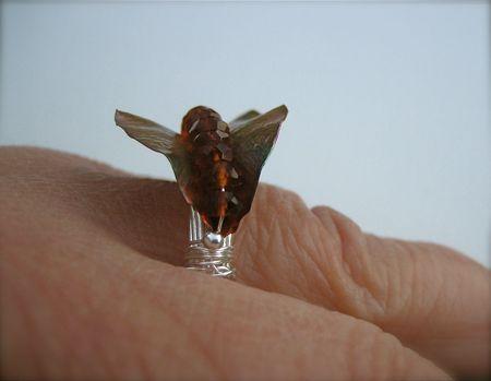 Bronze fold ring4