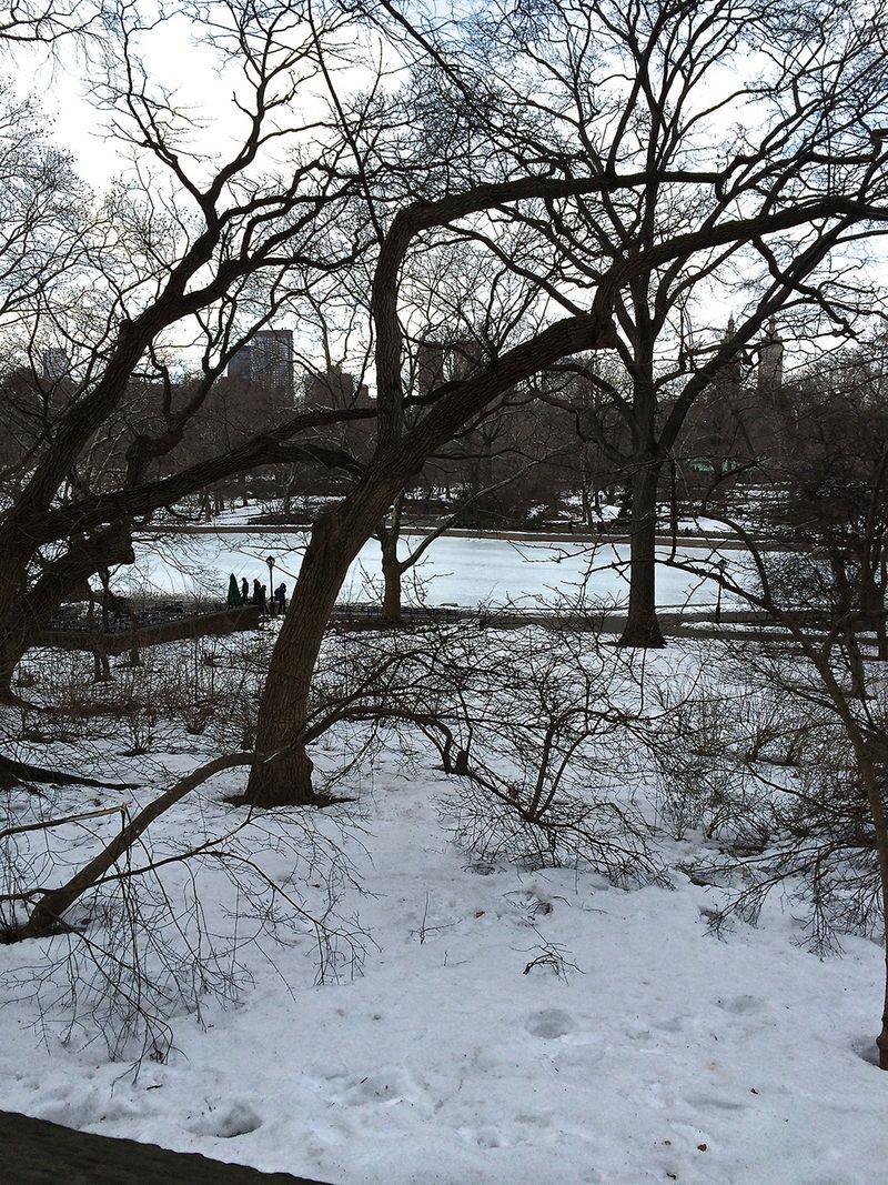 Central park under snow 14x18