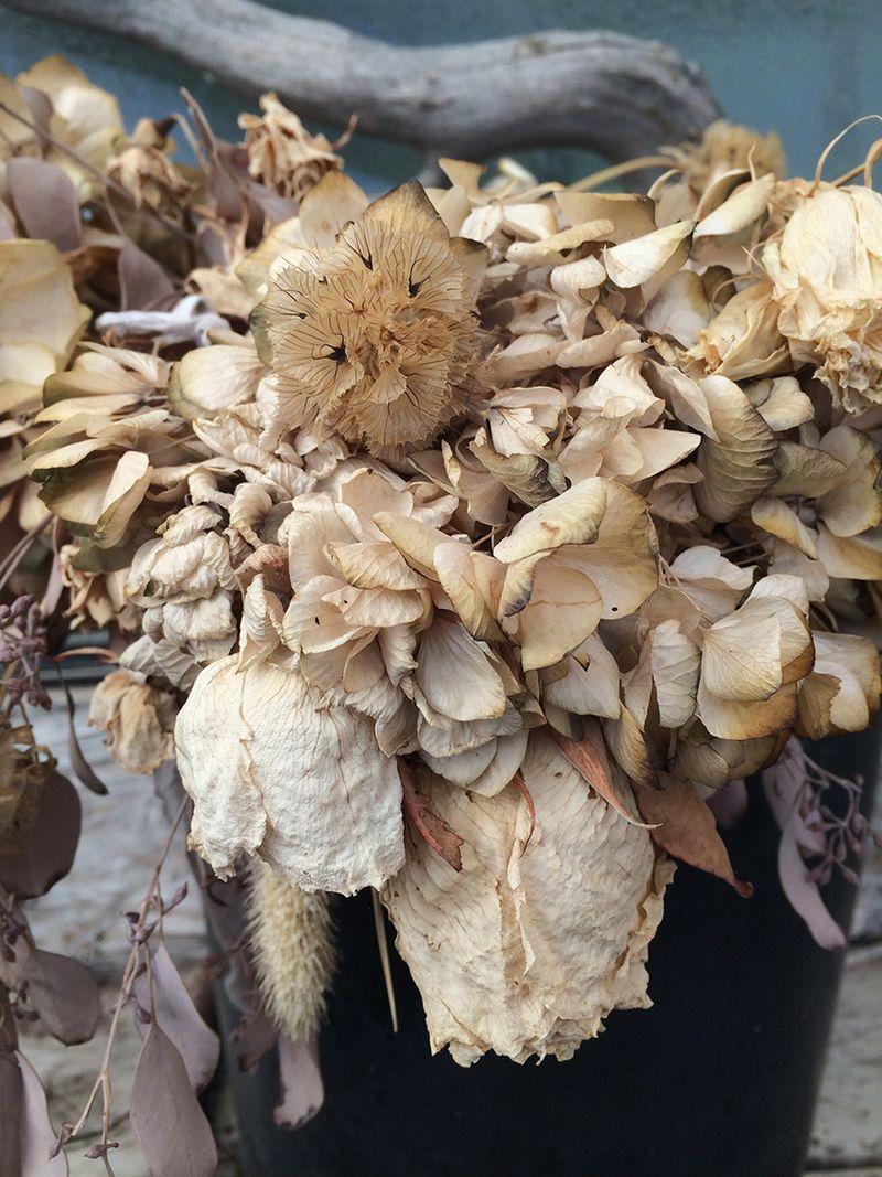 D dried flowers 12x16