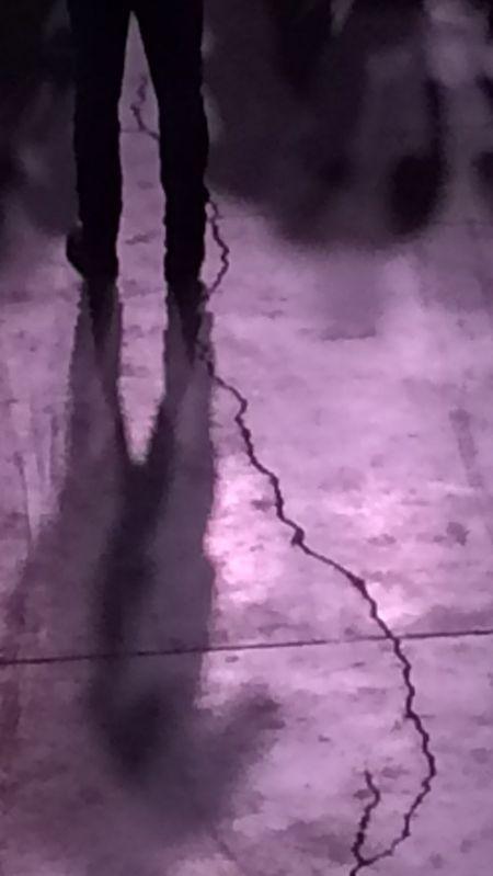 Concert 3 purple floor with crack 8.8x15.7