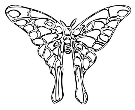 Wire luna moth b light vector image 66kb