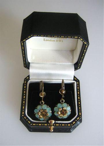 The_earrings